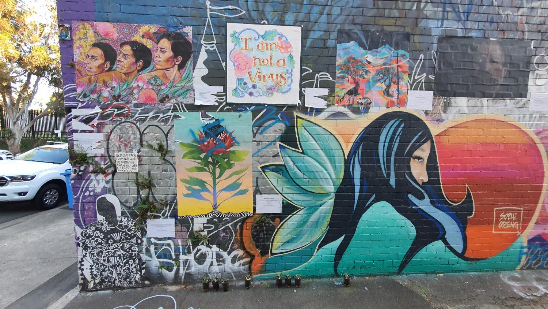 Cope Street (West) Newtown Street Art Sydney Art Out Live (1)