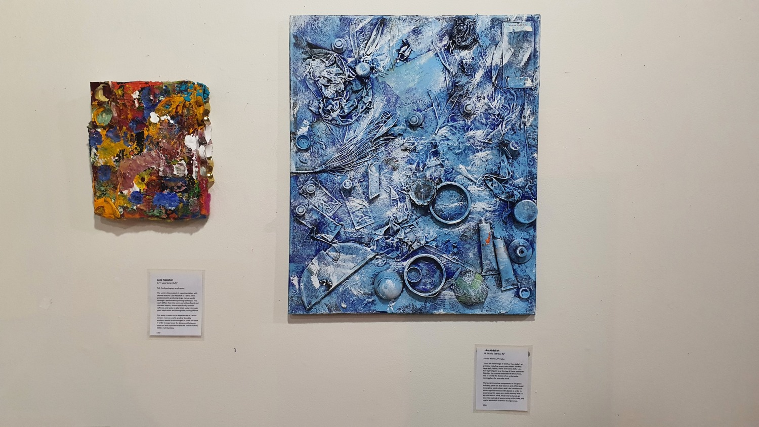 107 Projects Redfern Gallery Sydney Art Out Live (3)