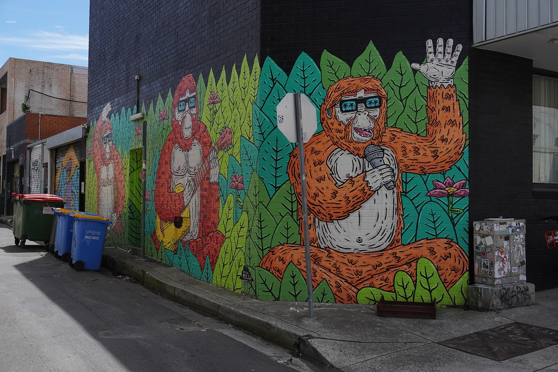 Enmore Lane Enmore Street Art Sydney Art Out Live Mulga the Artist